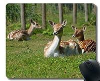 マウスパッド、鹿反芻動物 - ステッチエッジ