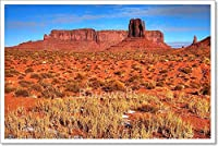barewalls モニュメント バレーアリゾナ ナバホ ネイション ペーパープリント ウォールアート 16in. x 24in.