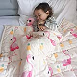 ZonLi Plush Weighted Blanket 7 lbs(41''x60'', Flamingo), Twin Size Weighted Blanket for Kids, Soft Fleece Heavy Blanket with