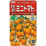 サカタのタネ 実咲野菜0103 すずなりミニトマト(オレンジ) オレンジキャロル 00920103