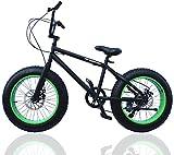 ファットバイク FAT BIKE 20インチ 自転車 ギア付 (BLACK/GREEN, 20インチ)