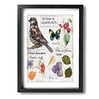 Hao Jinsun Sparrow,butterflies,barberry And Dry Flower Isolated Background With Letters 絵画 壁ポスター アートパネル 装飾画 壁飾り インテリアアート 木製の枠 モダン 現代の絵 額縁付き 40×30cm