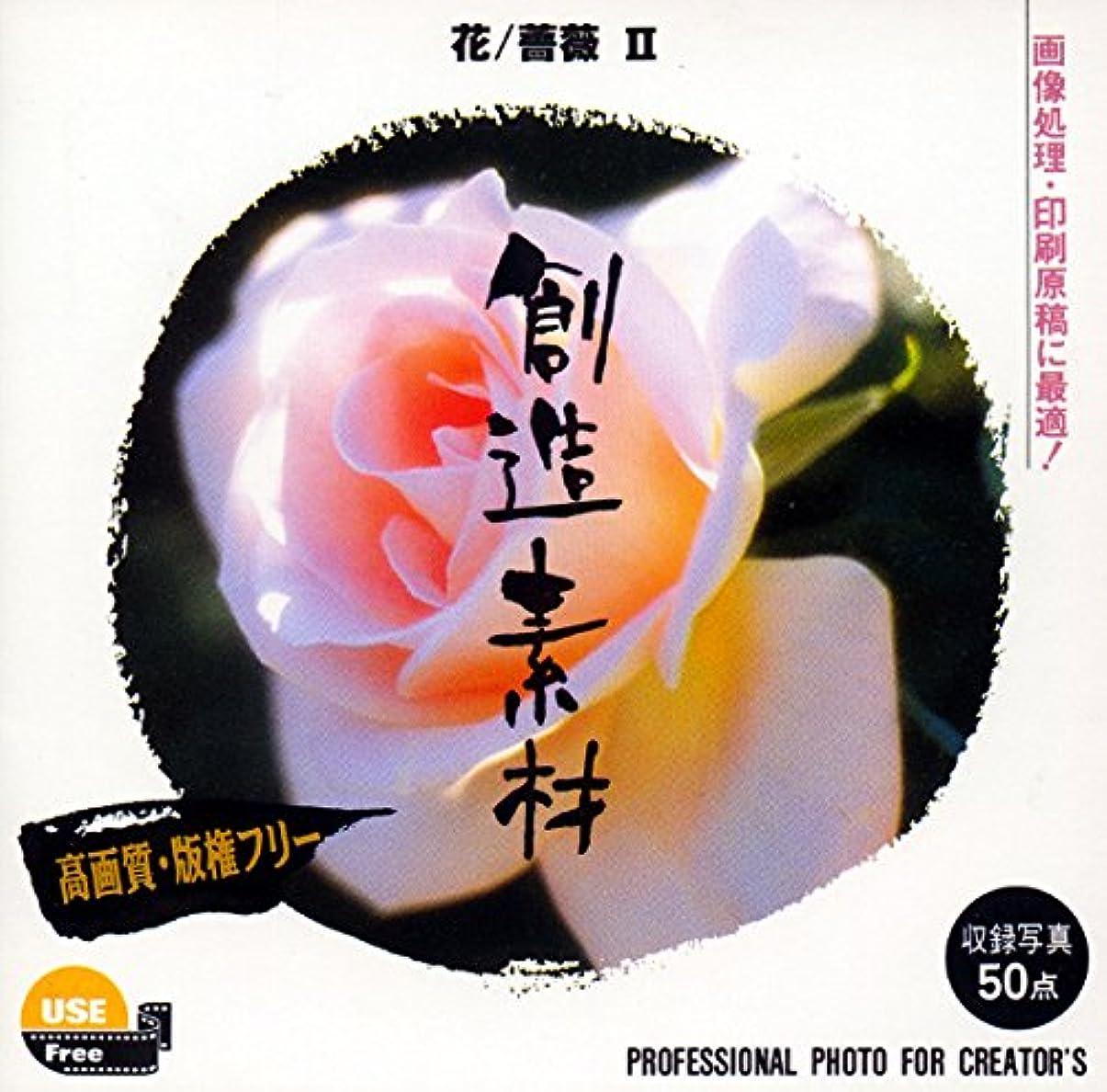 トライアスリートアグネスグレイあらゆる種類の創造素材 花/薔薇Vol.2
