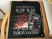 BABYMETAL ロゴステッカーシート TOKYO DOME MEMORIAL ビニールバッグ セット 2016 東京ドーム ベビーメタル