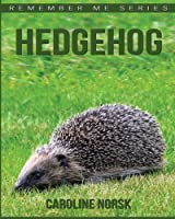 Hedgehog: Amazing Photos & Fun Facts Book About Hedgehog for Kids