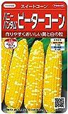 サカタのタネ 実咲野菜1202 ハニーバンタムピーターコーン スイートコーン 00921202