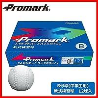 Promark プロマーク 軟式練習球12球入 B号球(中学生用) LB-312B