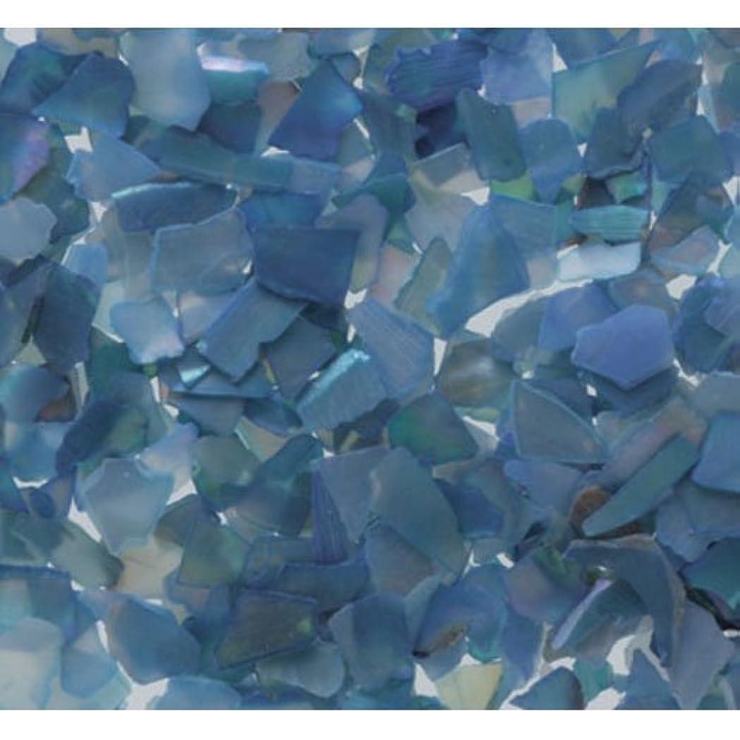 知覚できる肉屋アプトピカエース ネイル用パウダー シェルグレイン SS #307 ブルー 1g