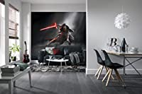 壁画–Star Wars–Kylo Ren