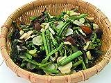 【6個セット】信明商事)水煮山菜 1kg×6袋