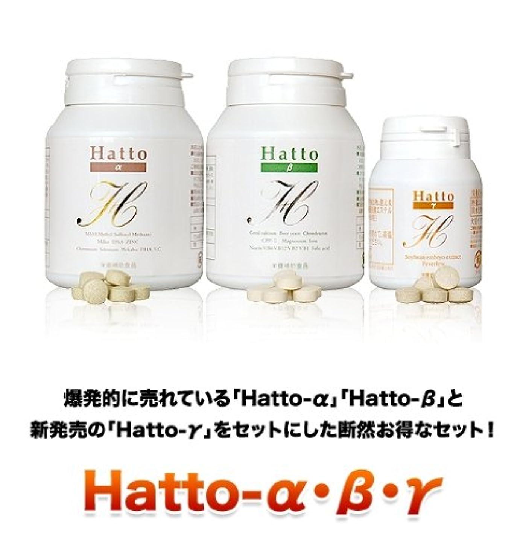 骨折社会主義聖人ヘアケアサプリメント Hatto-α&Hatto-β&Hatto-γ 各1本セット