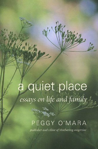 %d0ery quiet place essay Once the first draft is finished, polish it revising the structure, grammar, punctuation, etc find a quiet place where you can read composed content over and over again it will be really helpful to print the paper and make revisions on a hard copy.