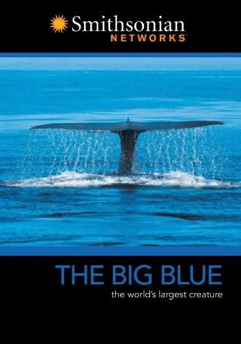 Big Blue [DVD] [Import]