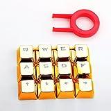 E元素12PBTキーキャップセット メカニカルキーボード用キートップ 12キーの組み合わせLOLに最適 引抜工具付 (ゴールド)