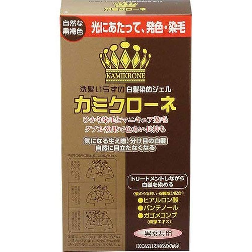 ひねり落ち着いたチーフカミクローネ(DB)自然な黒褐色