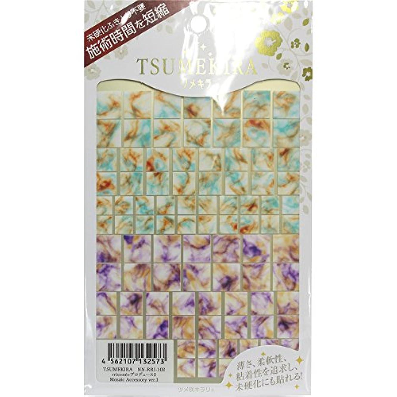 レタス特権送るTSUMEKIRA ネイルシール Mosaic Accessory ver.1 NN-RRI-102