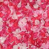 2000枚セット フラワーシャワー(造花) 結婚式 お祝い 誕生日パーティー用の最適なアイテム (ピンクグラデーション)