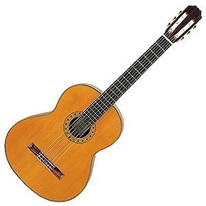 ARIA アリア バスギター アンサンブル 表板スプルース 単板 裏横板サペリ ハードケース付属 AC-75B