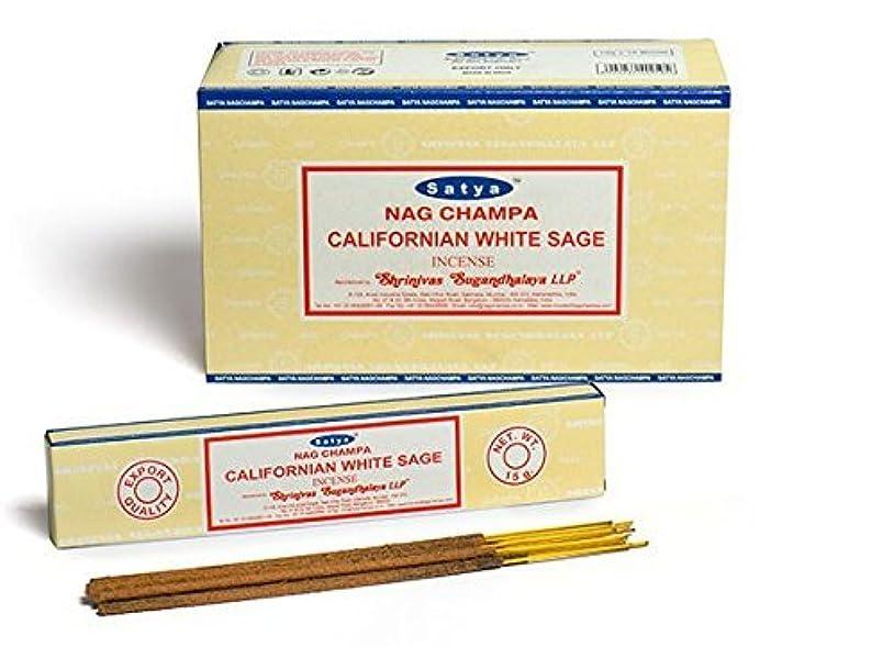 同種の美人ファブリックBuycrafty Satya Champa Californian White Sage Incense Stick,180 Grams Box (15g x 12 Boxes)