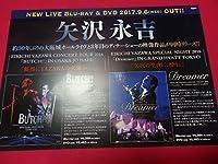 ミニポスターCF2 矢沢永吉EIKICHI YAZAWA CONCERT TOUR 2016 BUTCH EIKICHI YAZAWA SPECIAL NIGHT 2016Dreamer