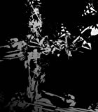 PANDORA(初回限定盤)(DVD付)()