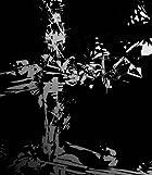 PANDORA(初回限定盤)(DVD付)(在庫あり。)