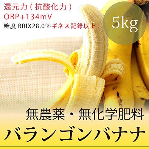 バランゴンバナナ 5kg フェアトレード・無農薬・無化学肥料・ポストハーベスト不使用・糖度28.0%・還元力(抗酸化力)+134mV