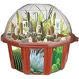DuneCraft Dome Terrariums Desert Biodome [並行輸入品]