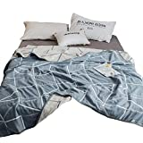 ドリームデイズ 六重タオルケット 優れた吸収性 肌にやさしい高級綿100%のガーゼ ケット ストライプ 柄ブルー (シングル:150×200cm)