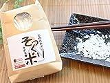 食品サンプル パーツ 本物のお米にそっくり過ぎる米 (200g) 夏休みの工作に おもしろ雑貨 アレンジいろいろ