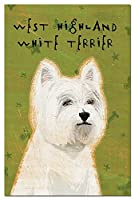 Tree-Free Greetings Eco-Notes Notecard Set 4 x 6 Inches 12-count Notecards with Envelopes West Highland Terrier (64976) [並行輸入品]
