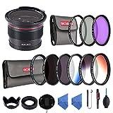 カメラフィルター 58MM レンズフィルターキット UV+CPL+ND2 ND4 ND8+FLD+0.35x魚眼レンズ UVフィルター レンズ保護用と紫外線カット+PLフィルター 光の反射除去+NDフィルター ND2 ND4 ND8 減光フィルター 長時間露光撮影+FLD/FL-Wフィルター 蛍光灯補正+52MM 0.35x魚眼レンズ スーパーフィッシュアイ+グラデーションフィルターキット(グレー/ブルー/オレンジ)+花形レンズフード+マルチレンズフード+レンズキャップ+クリーニングクロスx2+ブロアー+クリーニングペン+落下防止ストラップ+フィルターケース(3枚+6枚用)Beschoi 20点キット