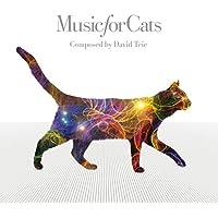 ねこのための音楽 ~Music For Cats~