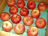 青森県産 サンふじ 優品 減農薬栽培 糖度13度以上 5kg 14-20玉