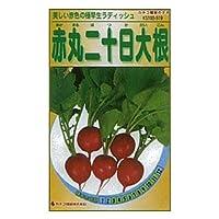 カネコ種苗 園芸・種 KS100シリーズ 赤丸二十日大根 野菜100 519