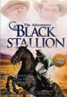 Adventures of the Black Stallion: Season 2 1 [並行輸入品]