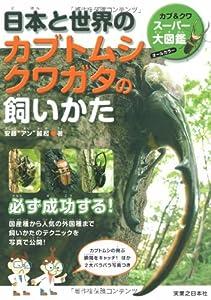 日本と世界のカブトムシ クワガタの飼いかた