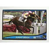 2012オーナーズホース03◆ノーマル/黒◆サニーブライアンOH03-H065≪OWNERS HORSE03≫