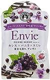 カンロ ピエール・エルメの新味覚キャンディ アンヴィ 65g×6袋