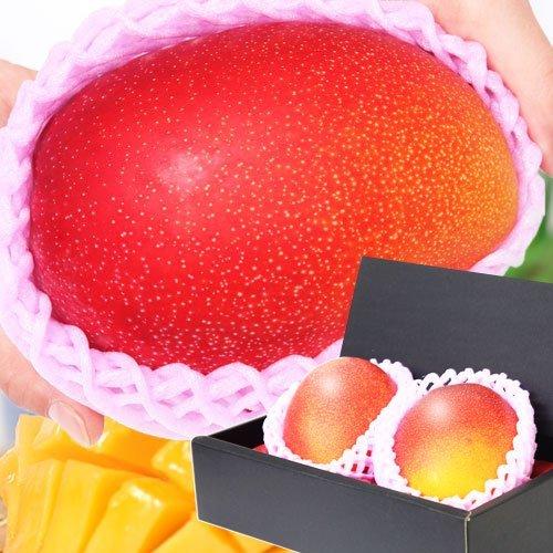 ぐるめライン 宮崎県産完熟マンゴー 2個 3~4Lサイズ