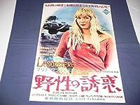 234 映画ポスター 「野性の誘惑」 マリナヴラディ