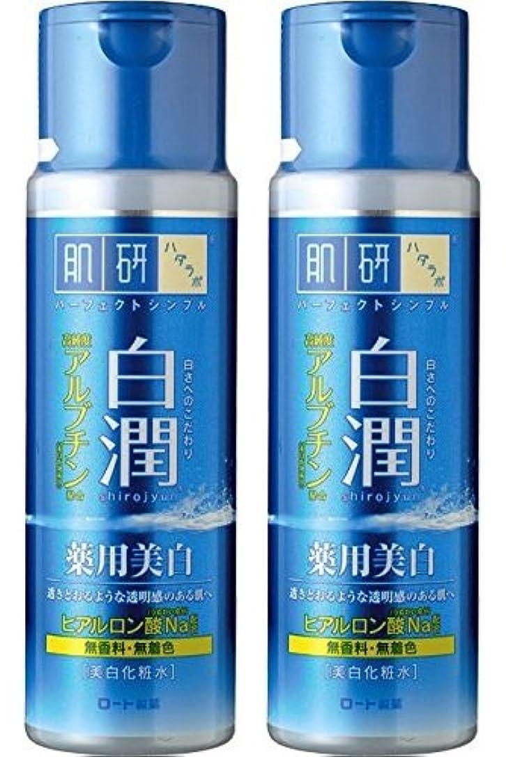 教より良い追い払う【まとめ買い】肌研 白潤 薬用美白化粧水 170mL ×2セット