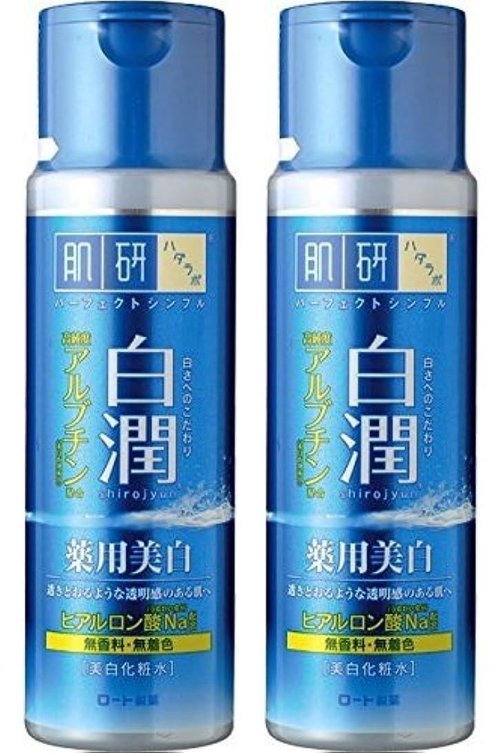 称賛打撃悪名高い【まとめ買い】肌研 白潤 薬用美白化粧水 170mL ×2セット