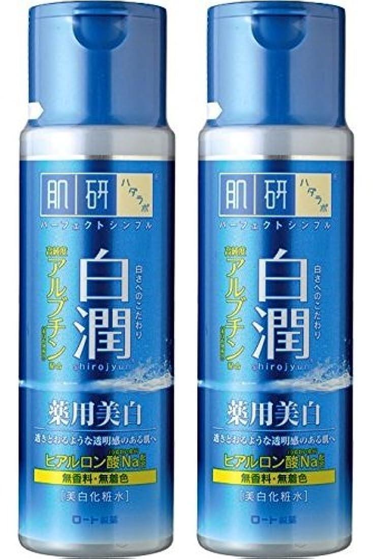 辞書累積常習的【まとめ買い】肌研 白潤 薬用美白化粧水 170mL ×2セット