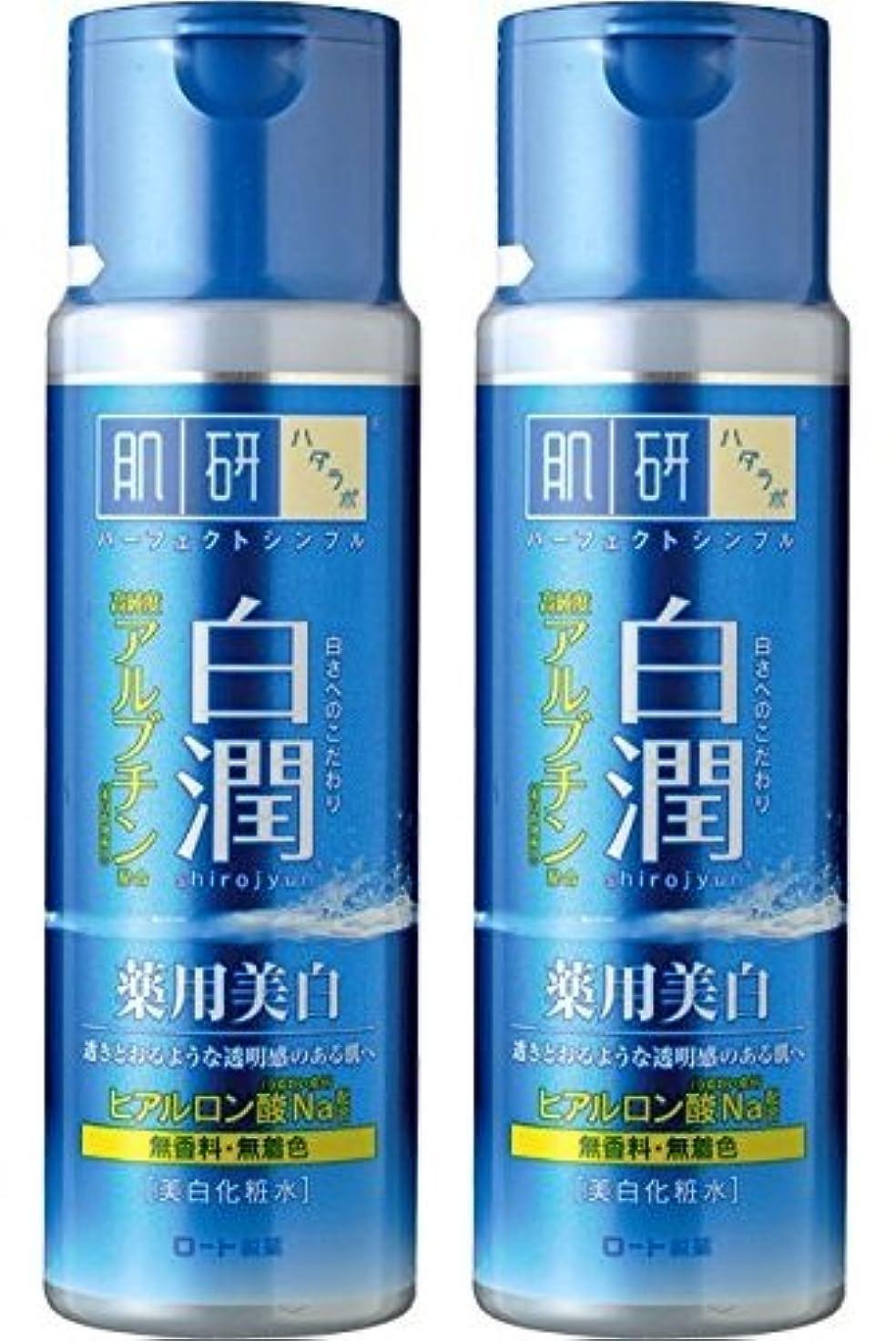 女性下手それぞれ【まとめ買い】肌研 白潤 薬用美白化粧水 170mL ×2セット