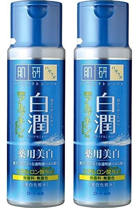 天気可動アスレチック【まとめ買い】肌研 白潤 薬用美白化粧水 170mL ×2セット