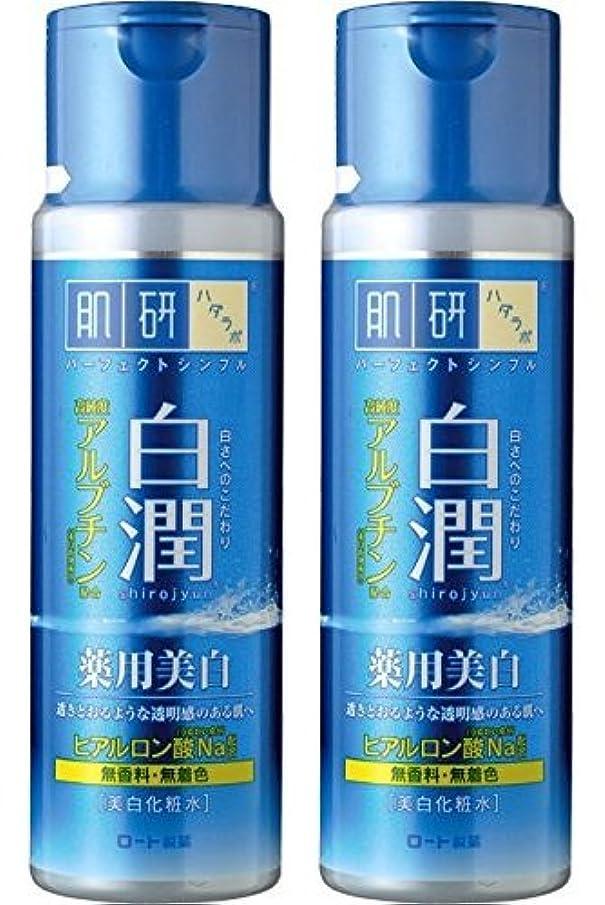定期的な買い手常に【まとめ買い】肌研 白潤 薬用美白化粧水 170mL ×2セット