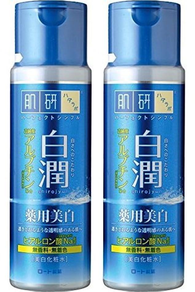 アルカトラズ島運河こっそり【まとめ買い】肌研 白潤 薬用美白化粧水 170mL ×2セット