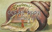 海洋公園、ワシントン–シェルとヨットお土産 24 x 36 Giclee Print LANT-33486-24x36