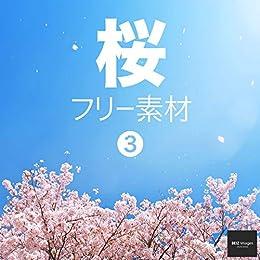 [BEIZ images]の桜 フリー素材 3 無料で使える背景素材集 BEIZ images (ベイツ・イメージズ)